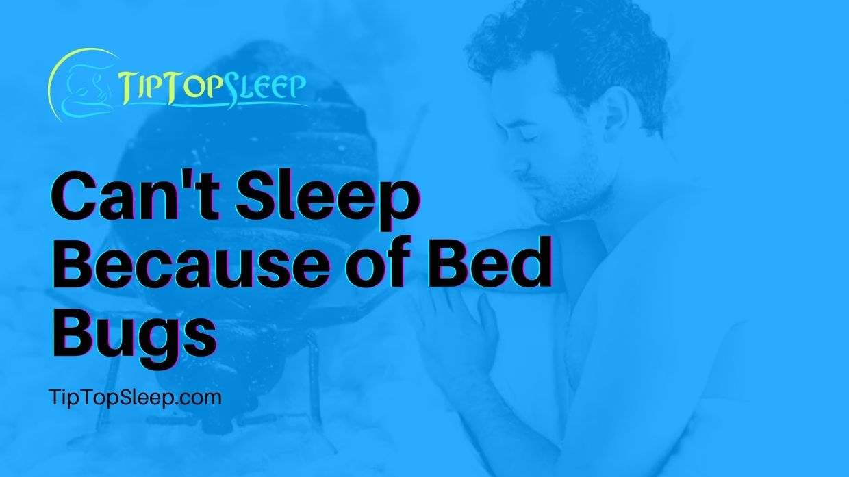 Cant-Sleep-Because-of-Bed-Bugs
