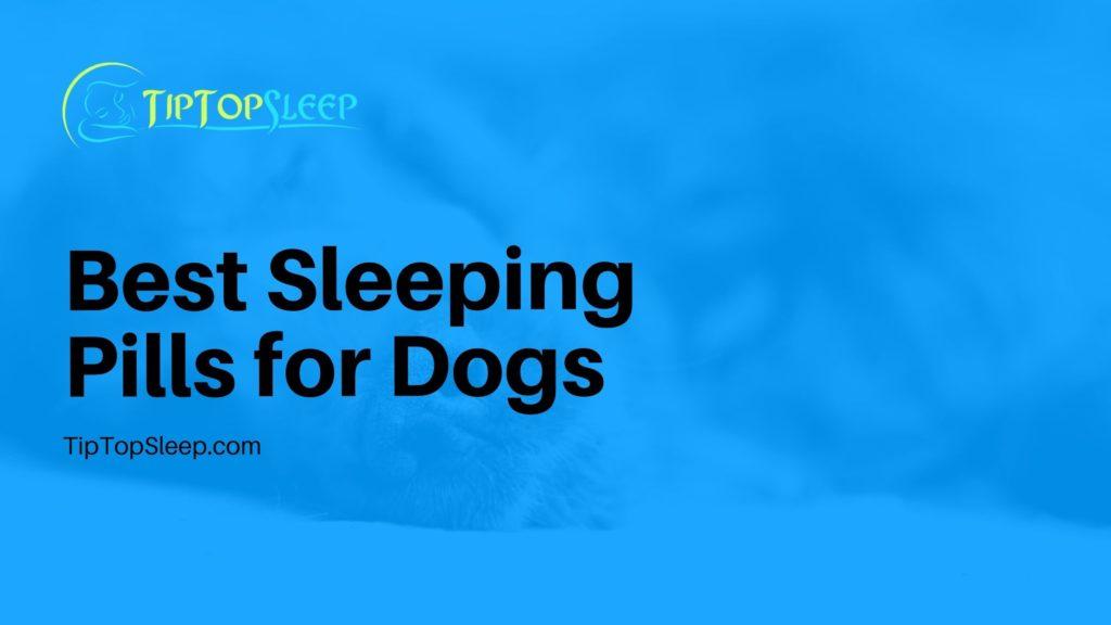 Best-Sleeping-Pills-for-Dogs