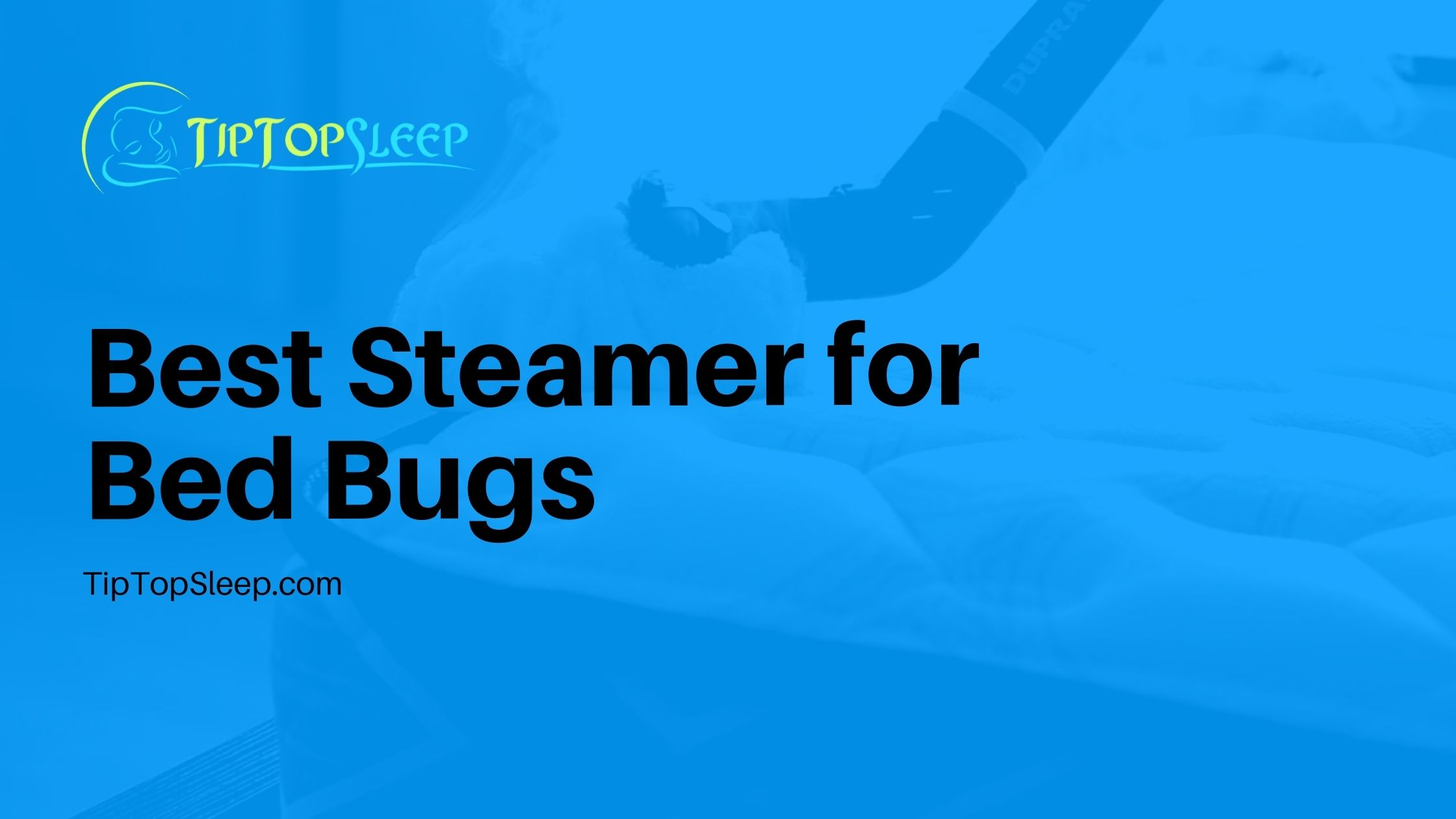 Best-Steamer-for-Bed-Bugs