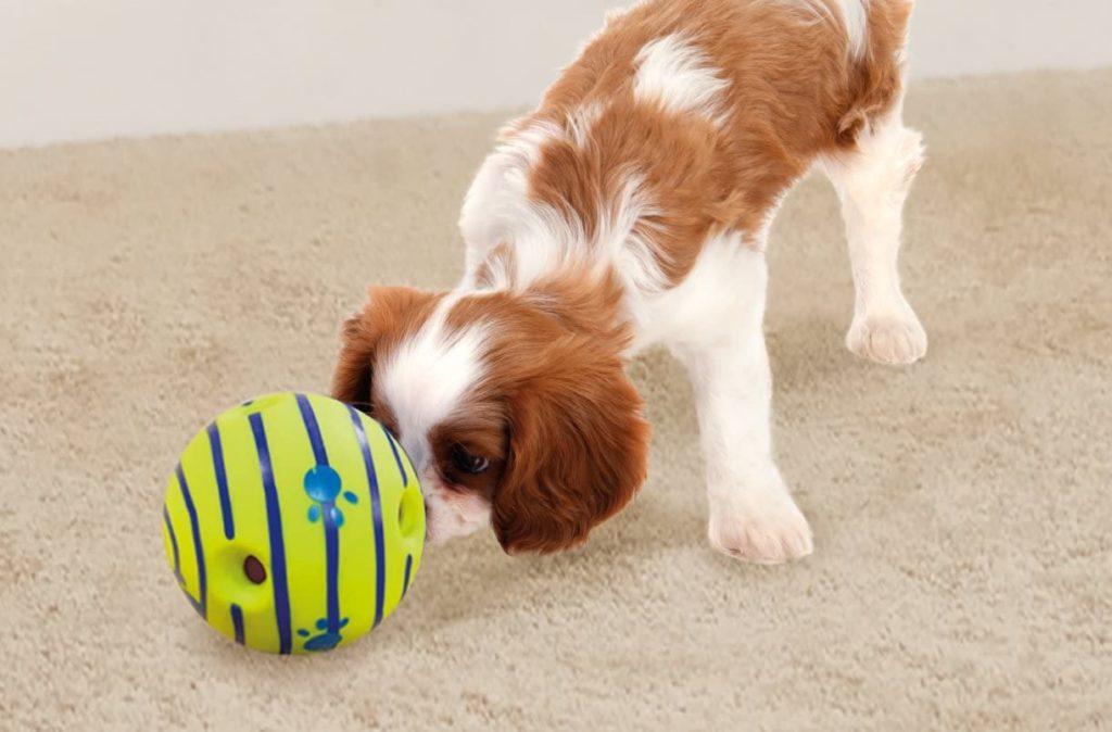 wobble-wag-giggle-ball-dor-dog
